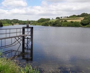 Expertise de l'écosystème des plans d'eau