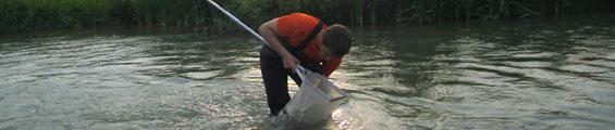 Laboratoire de biologie des milieux aquatiques en Bretagne